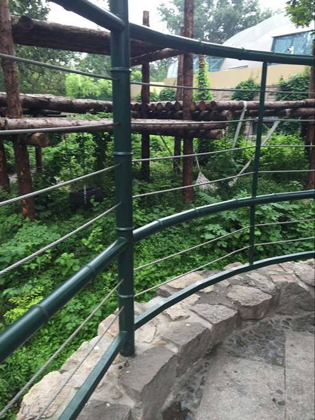 A round fence in the zoo and the fence is made of dark green pipe and silver rope mesh.